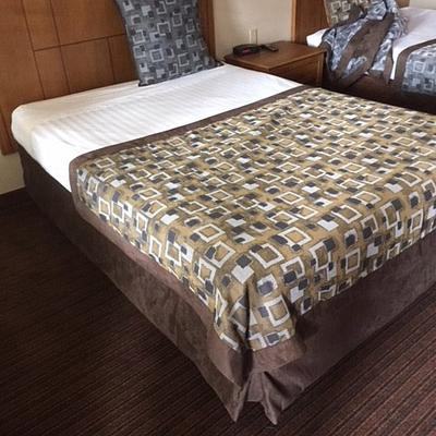 Anaheim Desert Inn Bedspread 2