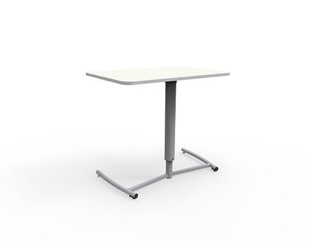 Ruckus desk ADA