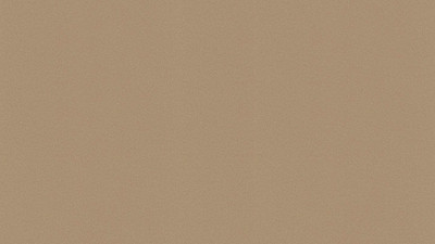 Trim & Paint for Walls | Champagne Metallic