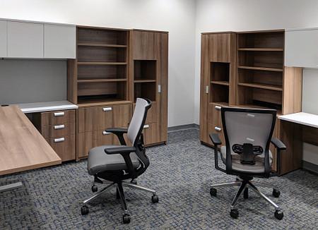 MSM office13 Aristotle Toggle AltusMesh