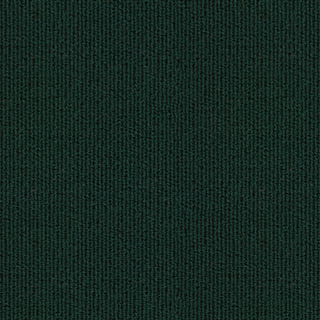 REAL TEAL