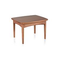 Rectangular End Table 16H